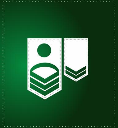 Atributika jėgos struktūrom (Movos, Antpečiai, Antsiuvai)